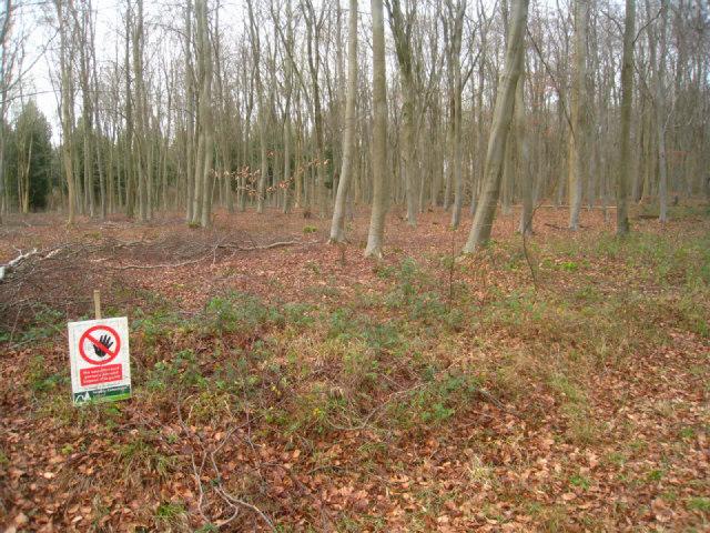 Warning sign at ground level