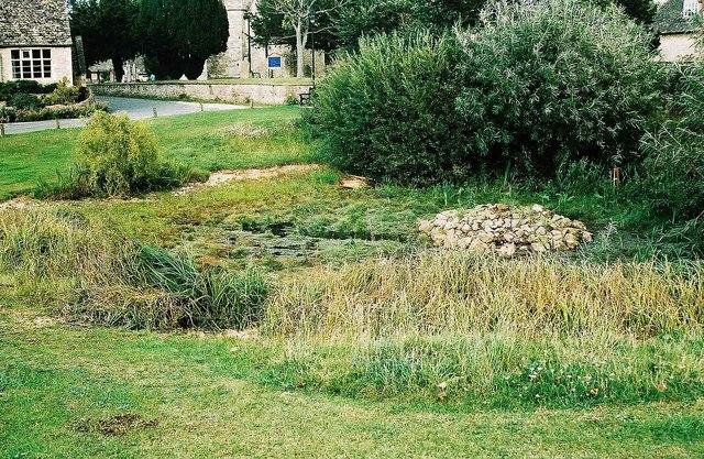 Village pond at Ducklington