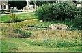 SP3507 : Village pond at Ducklington by P L Chadwick