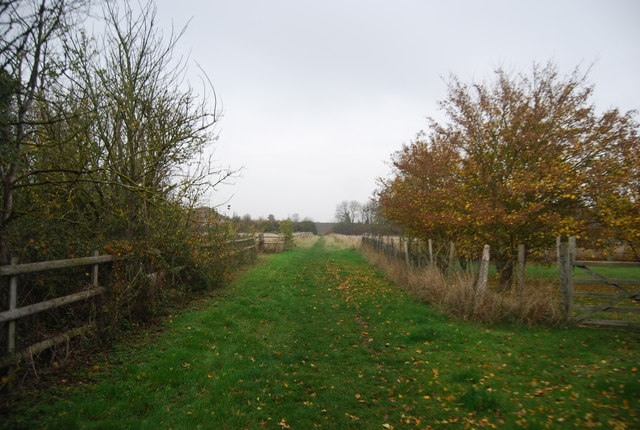 Footpath to Rabbit Shaw