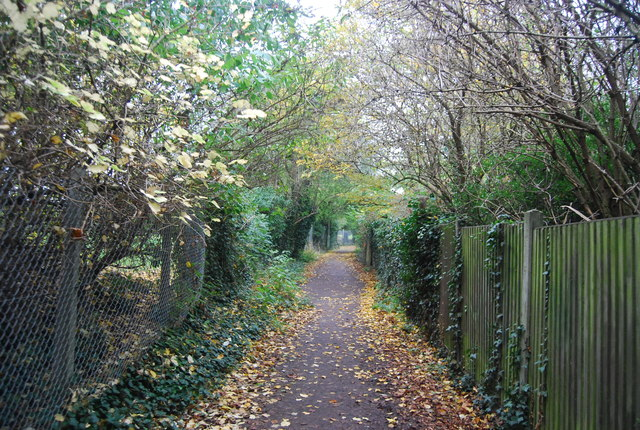 Footpath along the edge of Herne