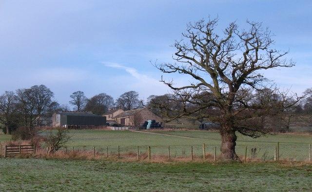 Bride Cross Farm