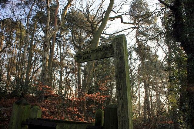 Signpost to Gallowsclough Lane