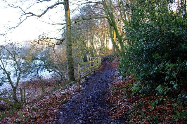 Path to Gallowsclough Lane