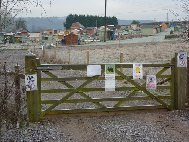 Allotments, with rabbit proof gate