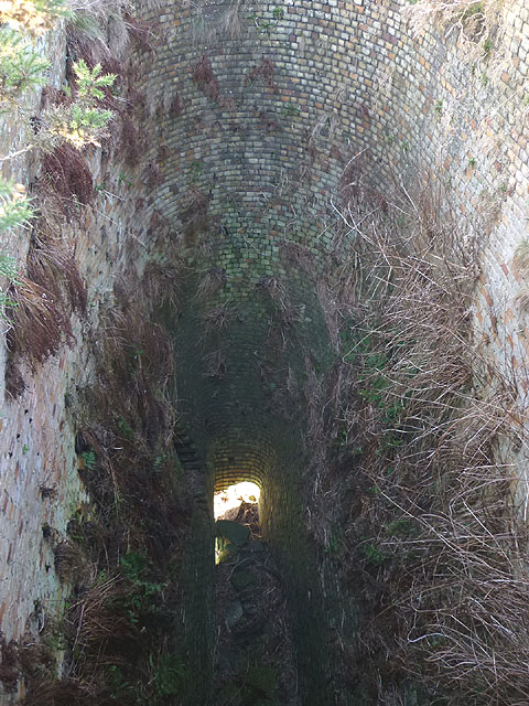 Looking into the top of the Ardale lime kiln