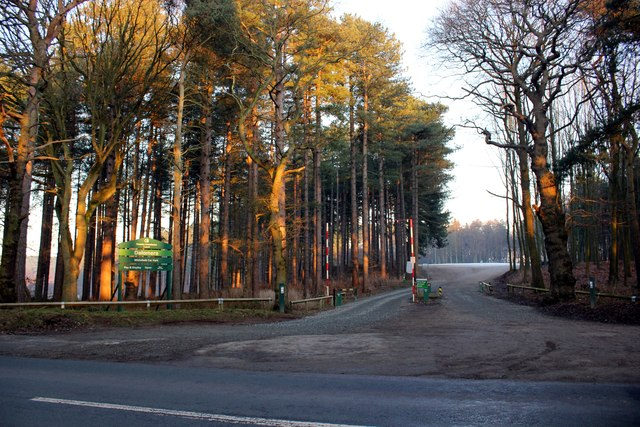 Entrance to Whitefield Car Park, Delamere Forest