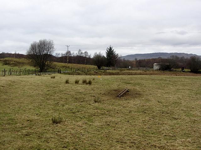 Sheep trough