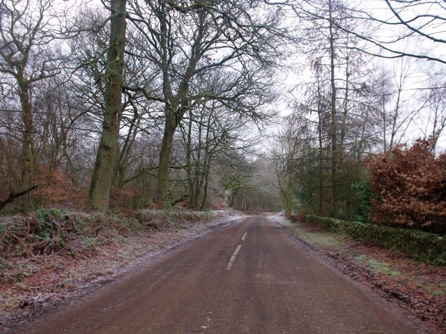 Torwood, the Glen Road