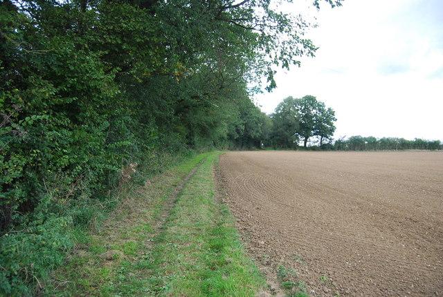 Bridleway follows the hedge