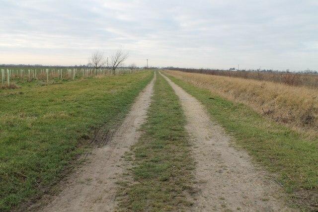 Track off Wash Road