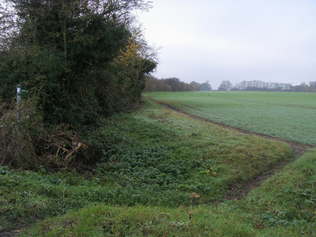 Footpath heading towards Lady Grove