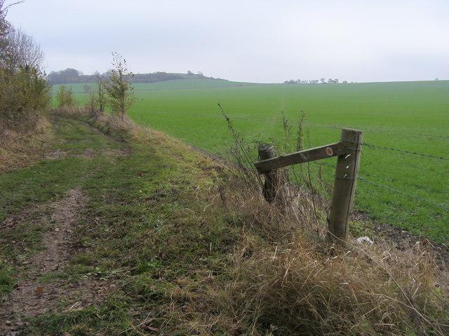 Bridleway to Lollingdon Farm