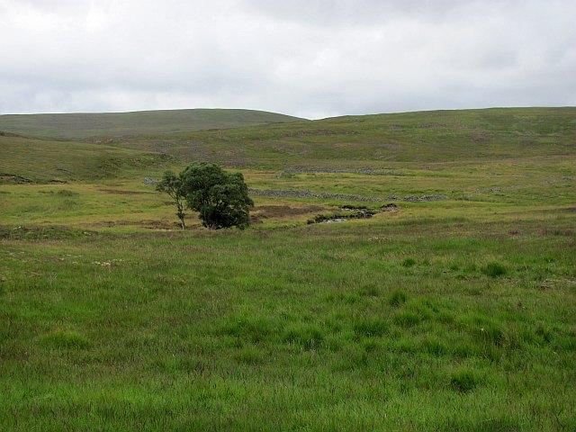 Ruined dykes, Achrintle Burn