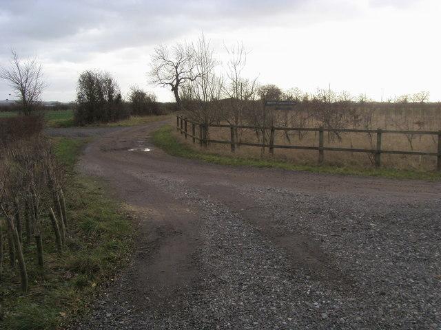 Langford Lane