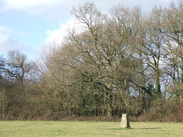 Trig point near Otford