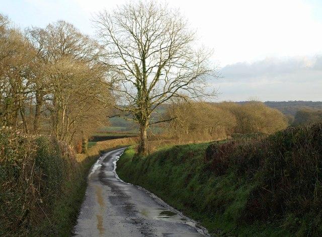 Lane near Cadditon