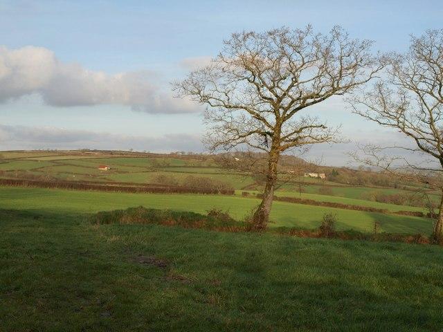 Fields at Cadditon