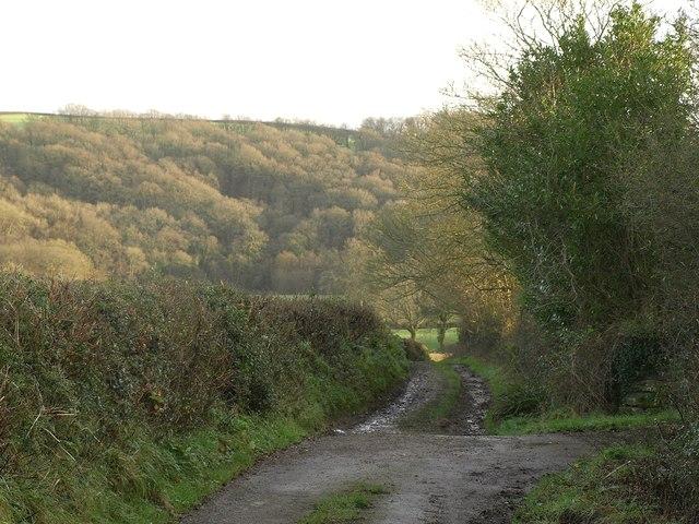 Tarka Trail south of Bondleigh