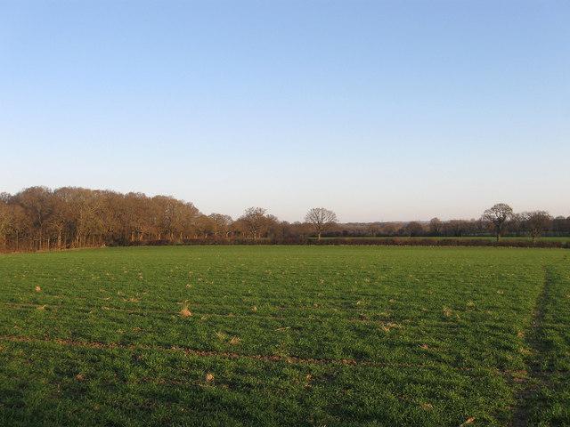 Holmes Field