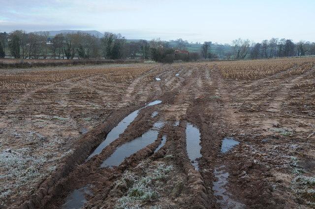 Frozen arable land, Llanvapley