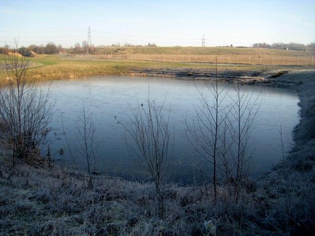 Small lake at Newlands