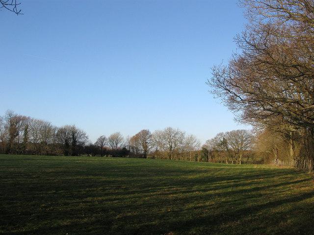 Carpenters Field