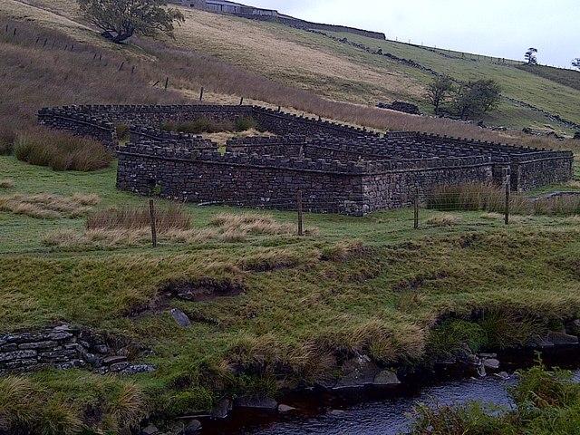 Sheepfold on the River Porter (Little Don River)