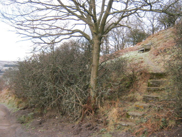 Steps to viewpoint on Langthwaite Scar