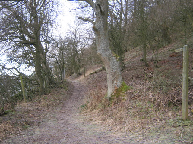 Bridleway north west off the Langthwaite to Booze Road