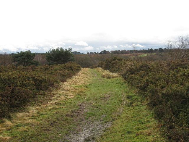 Track, Barrow Hill