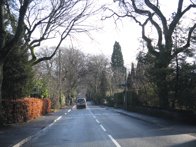 Macclesfield - Ivy Lane just east of Kendal Road