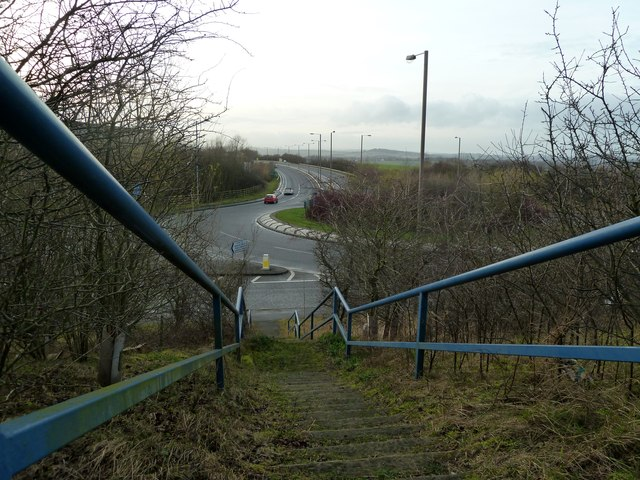 Steps on public footpath at Platts Common