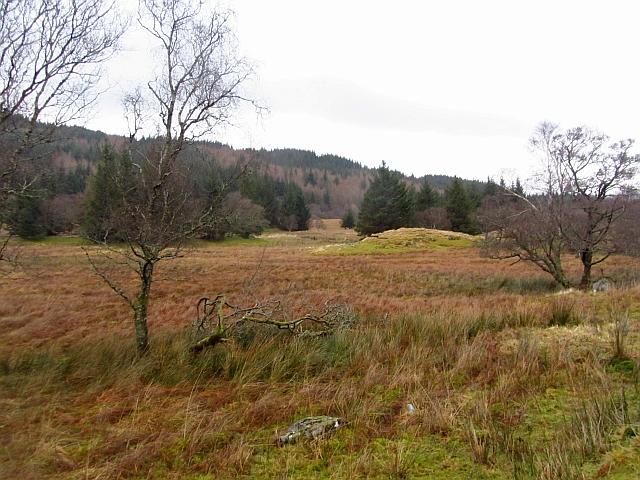 Wetland, Glen Lonan