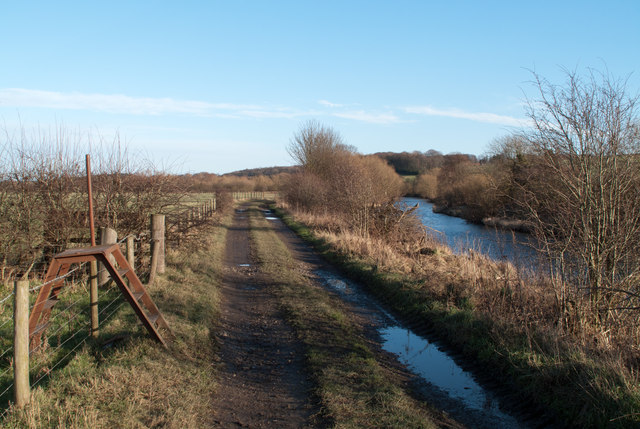 Farm road on north side of River Wear
