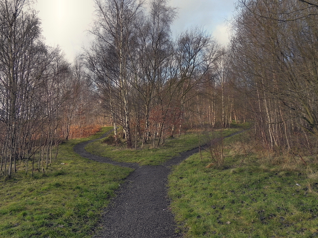 Outwood Country Park, A Choice of Paths
