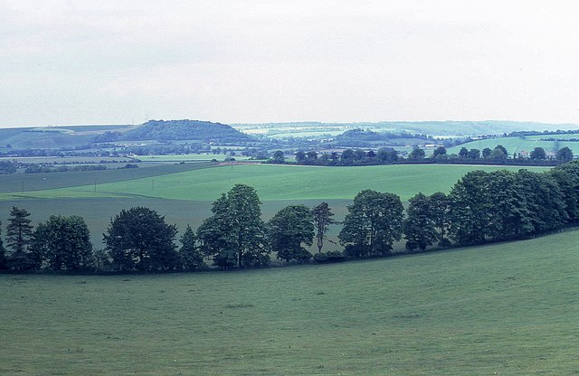 Looking north across the Meon Valley