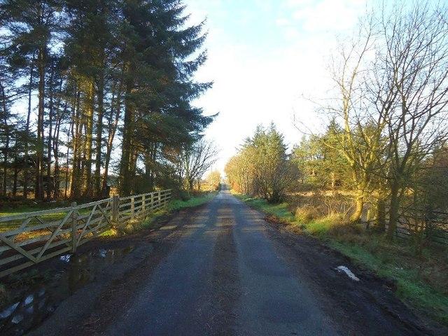 Cadgersloan, road towards Lochgreen