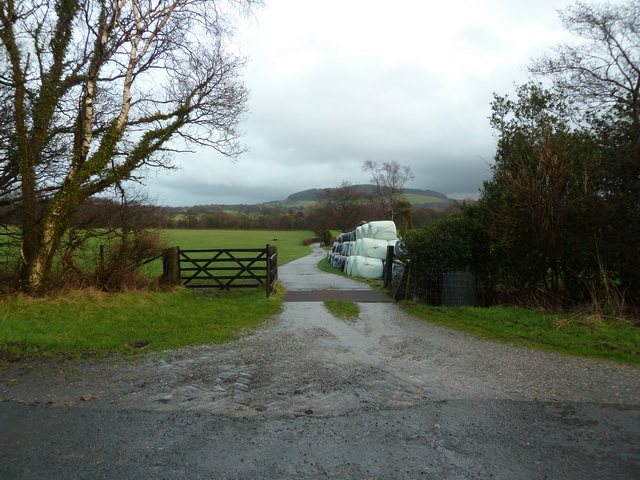 Road to Wearden's Cottage