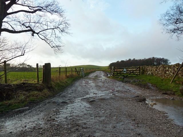 Road to Huds Brook Farm