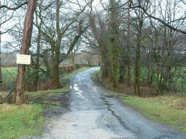 Road to Plantation Farm