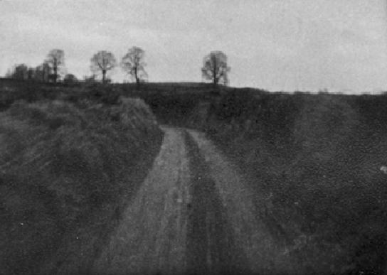Ash Bullayne Lane