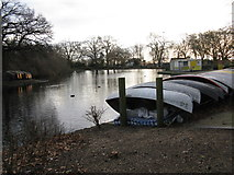 TQ3187 : Finsbury Park boating lake by Dr Neil Clifton