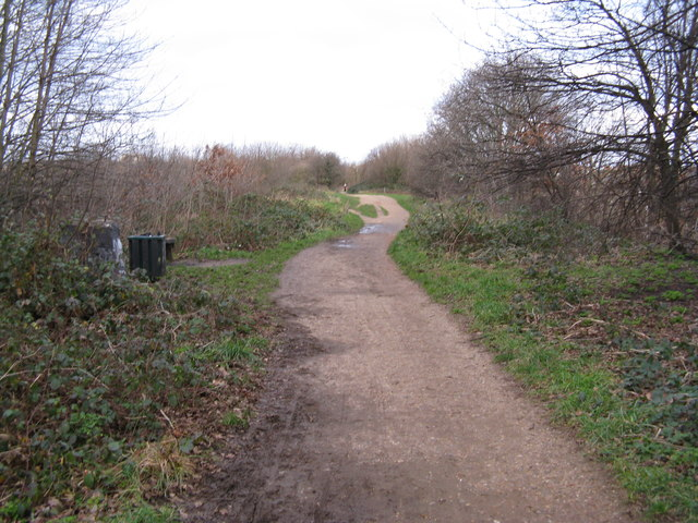 The Parkland Walk, looking north