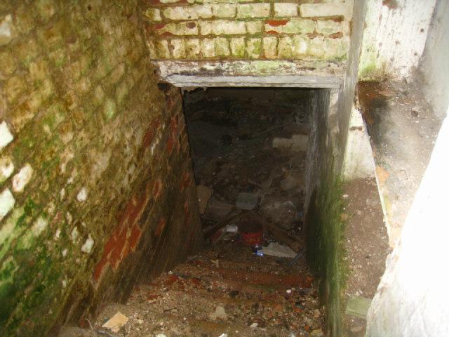 Cellar steps - Blackwood Cottage