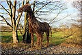 SJ4368 : Willow Horse on the  Millennium Greenway by Jeff Buck