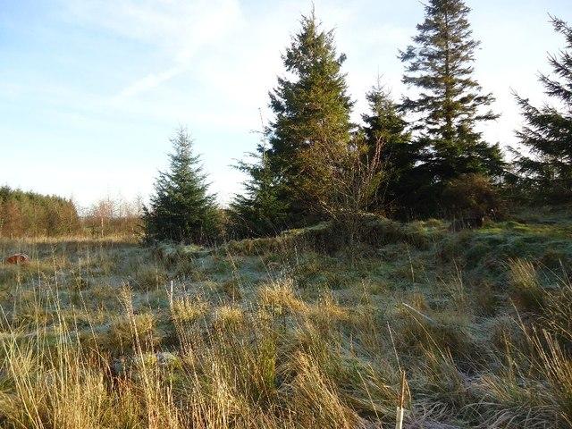 Loanfoot Farm, site of