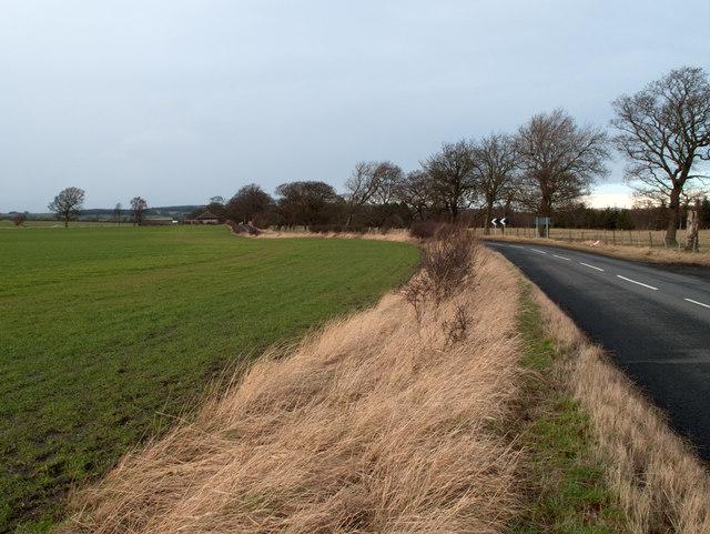 Field adjacent to Whitworth Lane