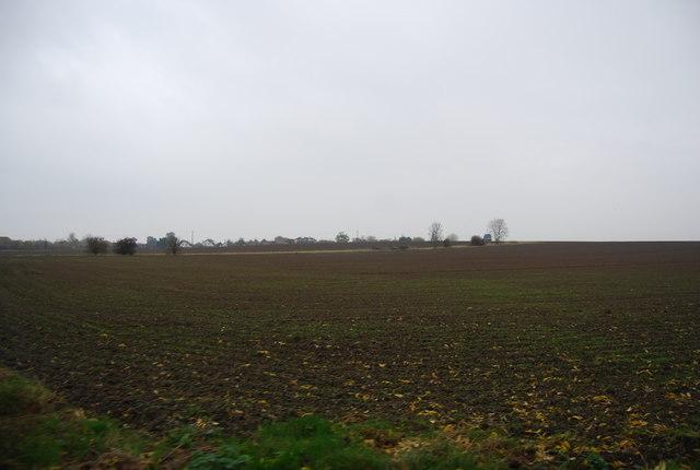 Farmland south of Chestfield
