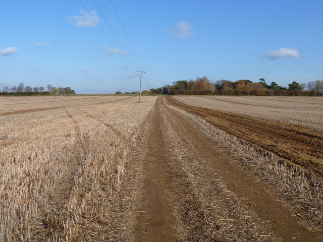 Straight line path